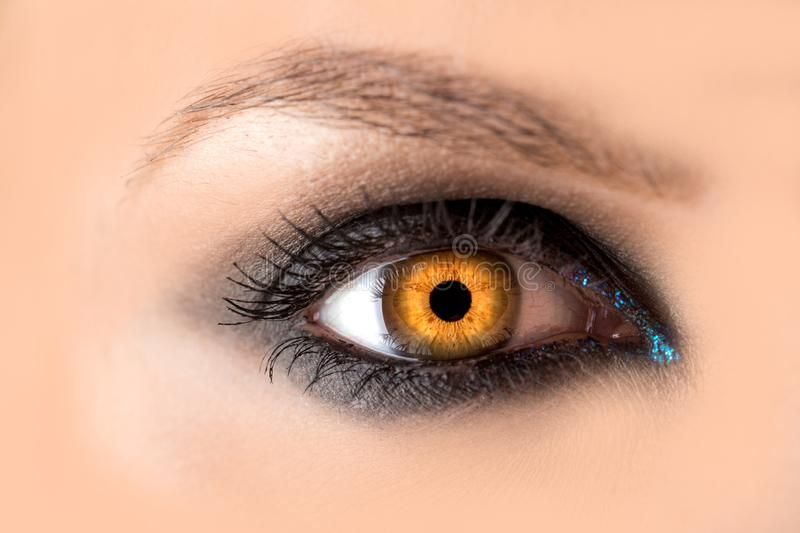 Mystic amber eye, witch witchcraft concept, fairy-tale look, fairy or young woman with beautiful make-up and yellow royalty free stock images