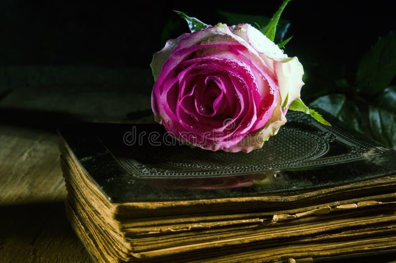 Mystic book stock photo