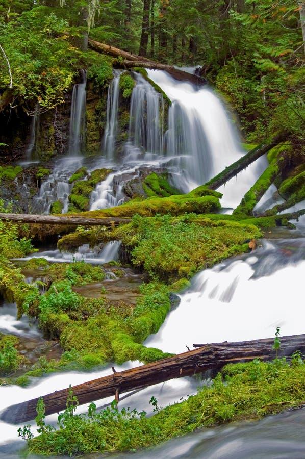 Mystic Falls stock photography