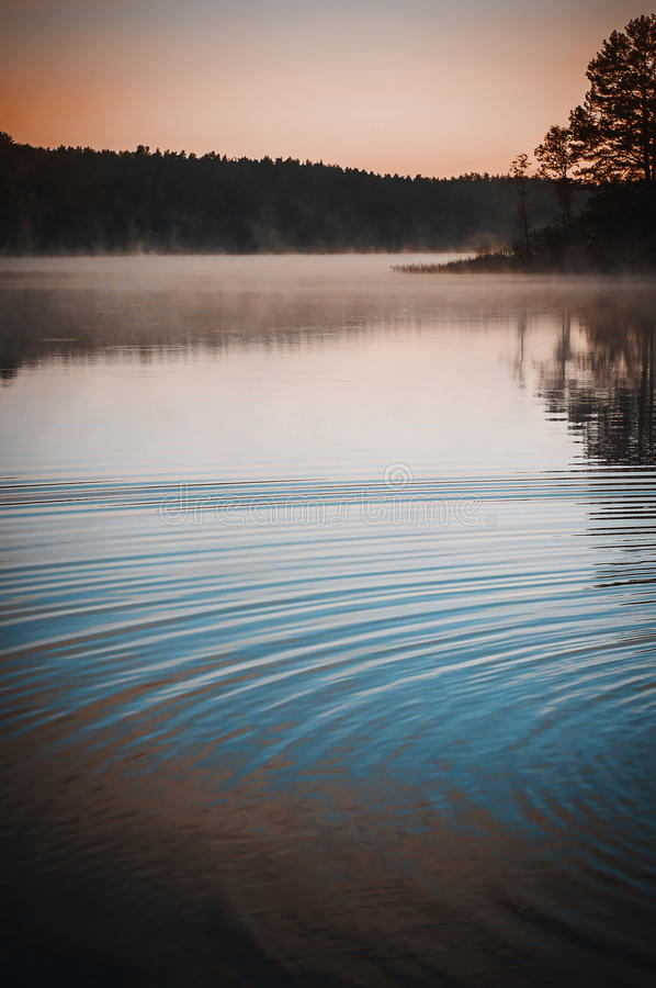 Mystic fog and circles on the water surface. royalty free stock images