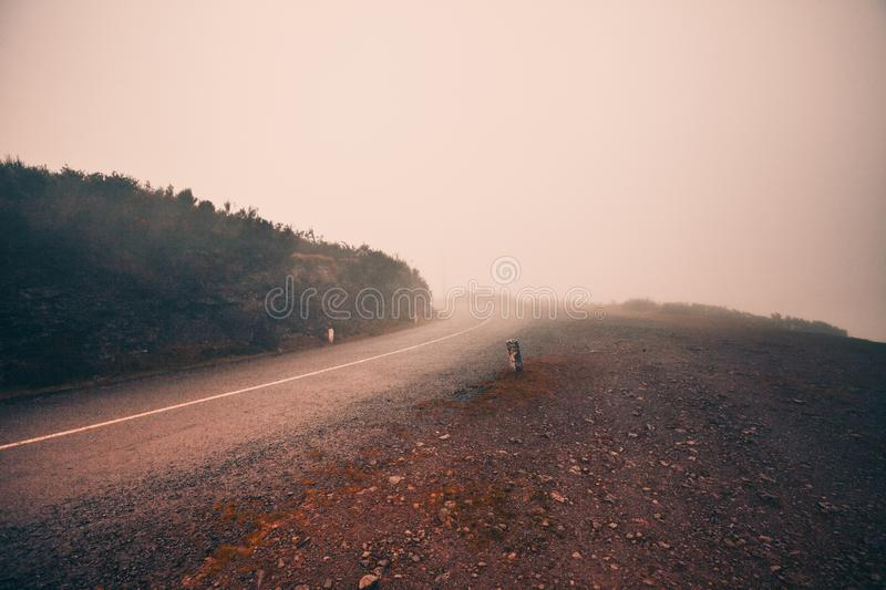 Mystic foggy road royalty free stock photos
