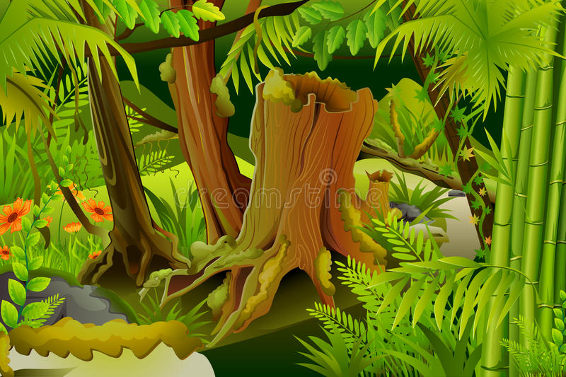 Mystic Jungle. Vector illustration of dense trees in mystic jungle vector illustration