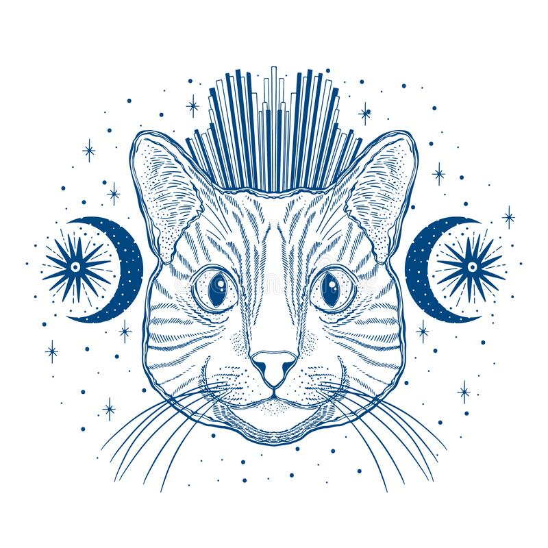 Free Mystic Magic Cat. Portrait Face Head Hand Drawn Vintage Style.Line Art Ink Painting.Graphic Design Tatoo Royalty Free Stock Photo - 171534005