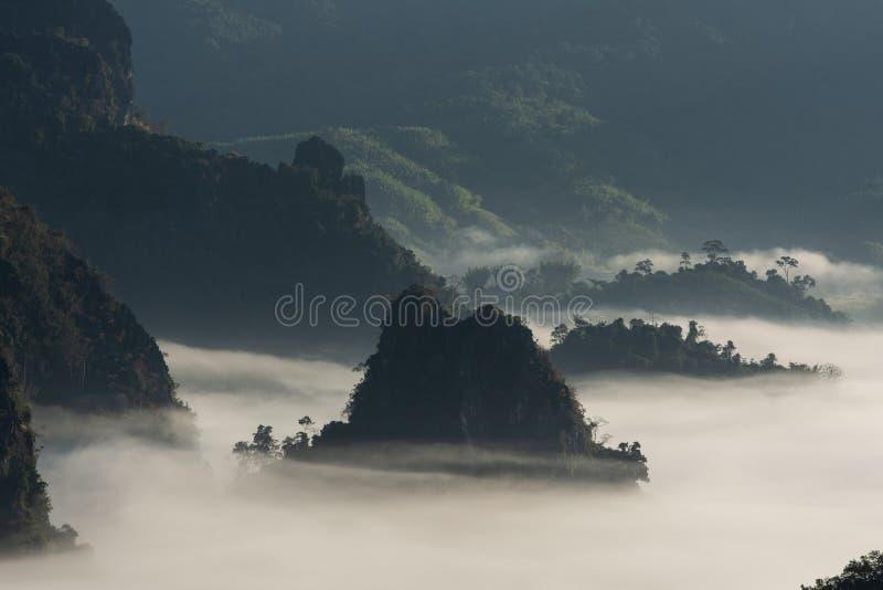 Mystic mist valley in Thailand stock photo