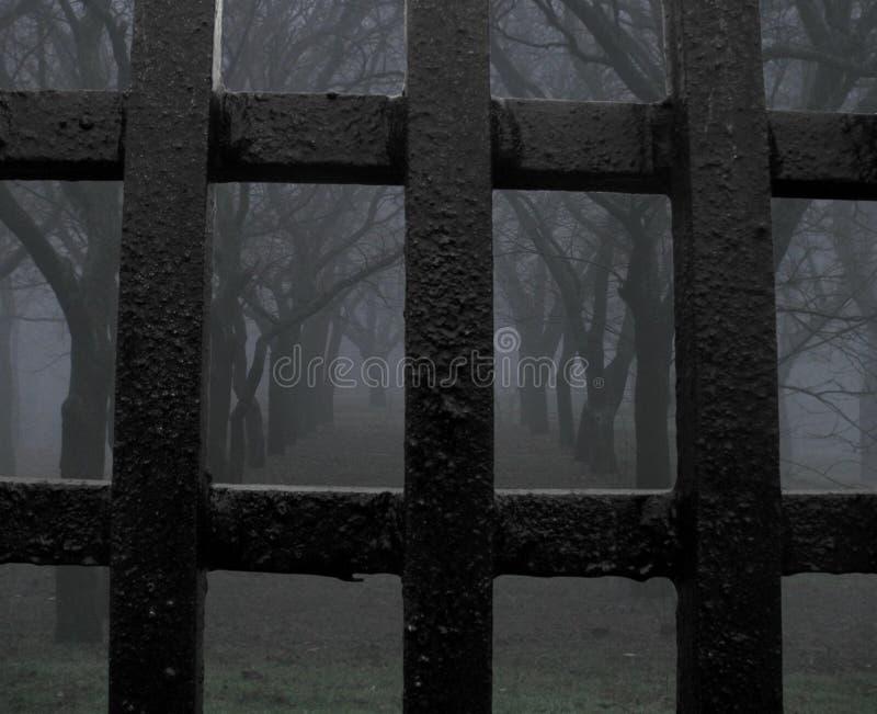 Download Mystic park (jail) stock photo. Image of fantasy, winter - 12502642