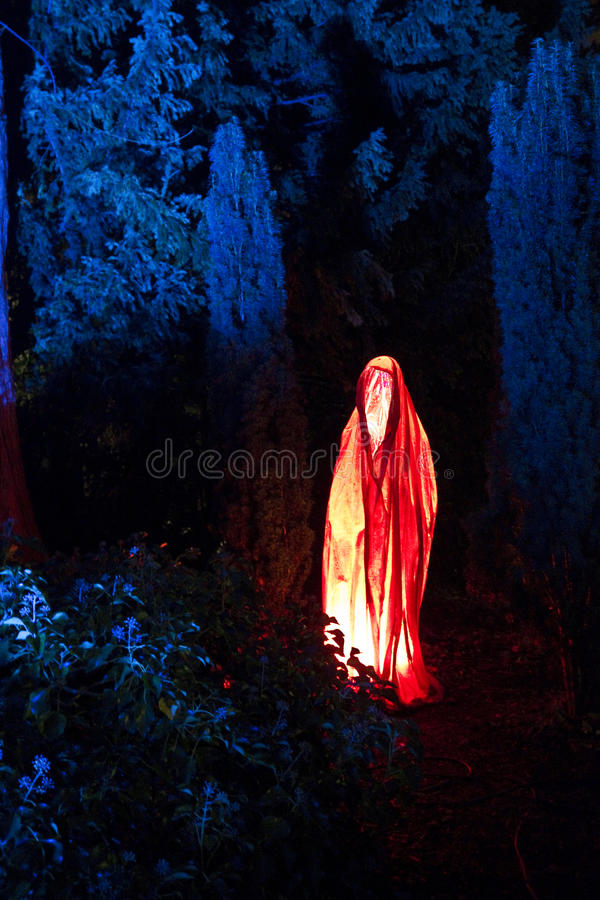 Mystic royalty free stock images