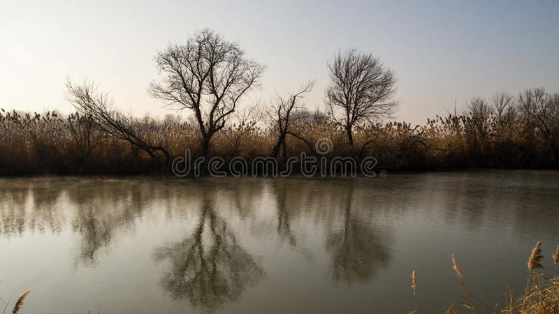 Mystic river royalty free stock image
