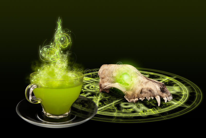 Download A mystic spell with skull stock image. Image of scary - 23214555