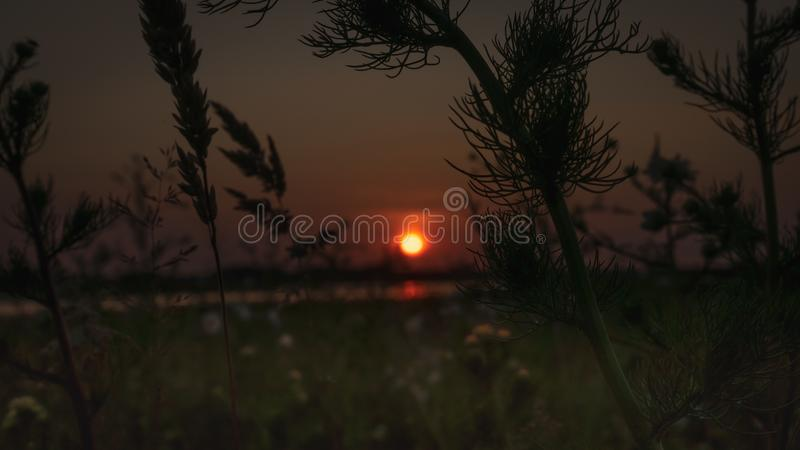 Mystical countryside landscape at sunset stock photos