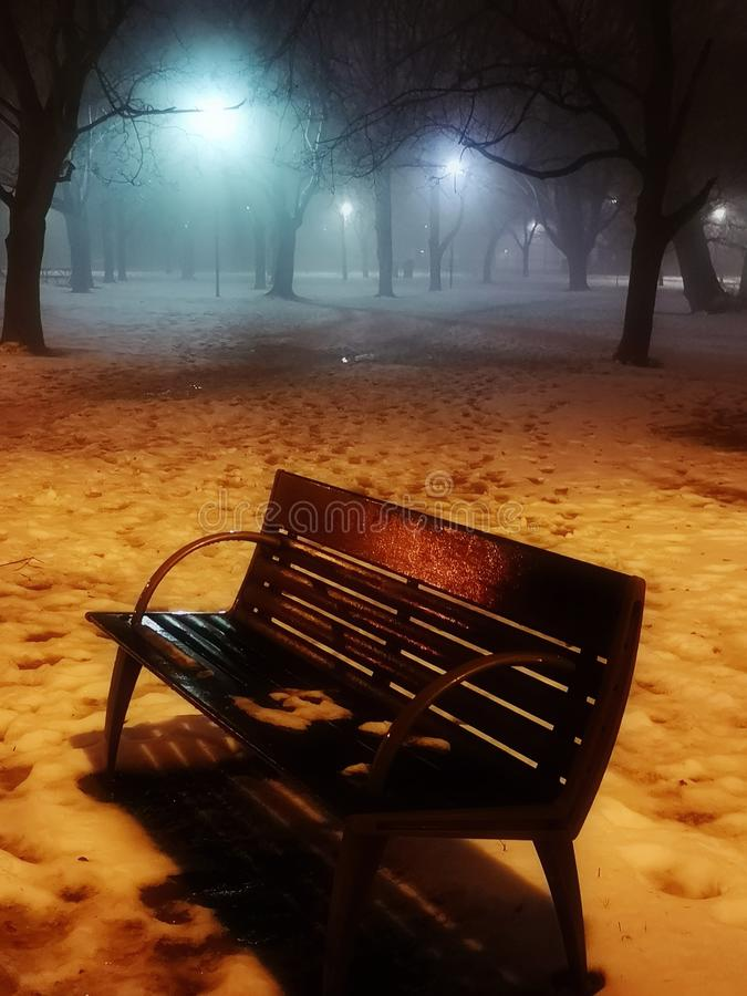 Mystical fog in night park royalty free stock image