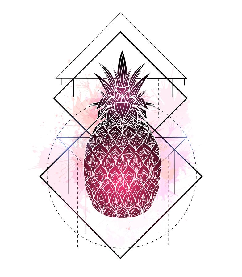Mystical illustration of a pineapple with a contour drawing and pink watercolor splashes. Magic triangular drawing stock illustration