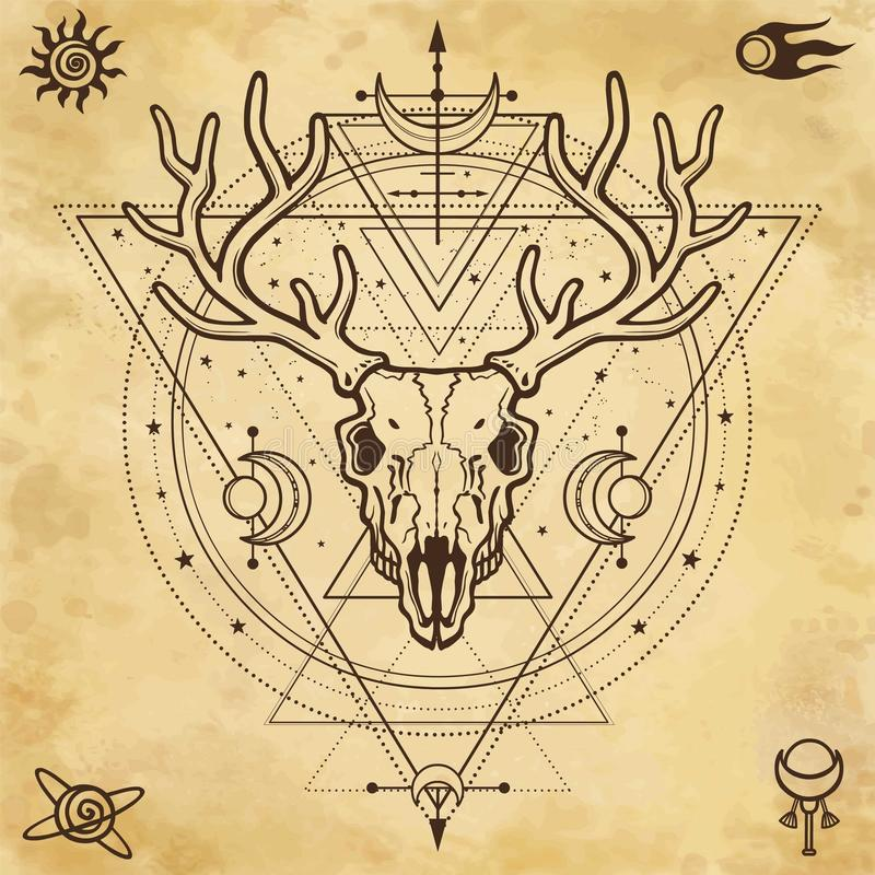 Mystical image of the skull a horned deer, sacred geometry, symbols of the moon. Background - imitation of old paper. Esoteric, paganism, occultism.Vector stock illustration