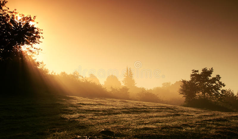 Mystical landscape. Beautiful mystical landscape in browny and yellow colors with sunbeam at sunrise stock photography