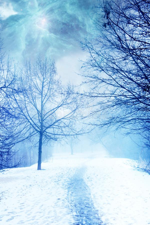 Mystical magic winter landscape with snow and path. Mystic mystical magic landscape in winter season with trees, path, snow, magic sky with galaxy effect like a stock photography