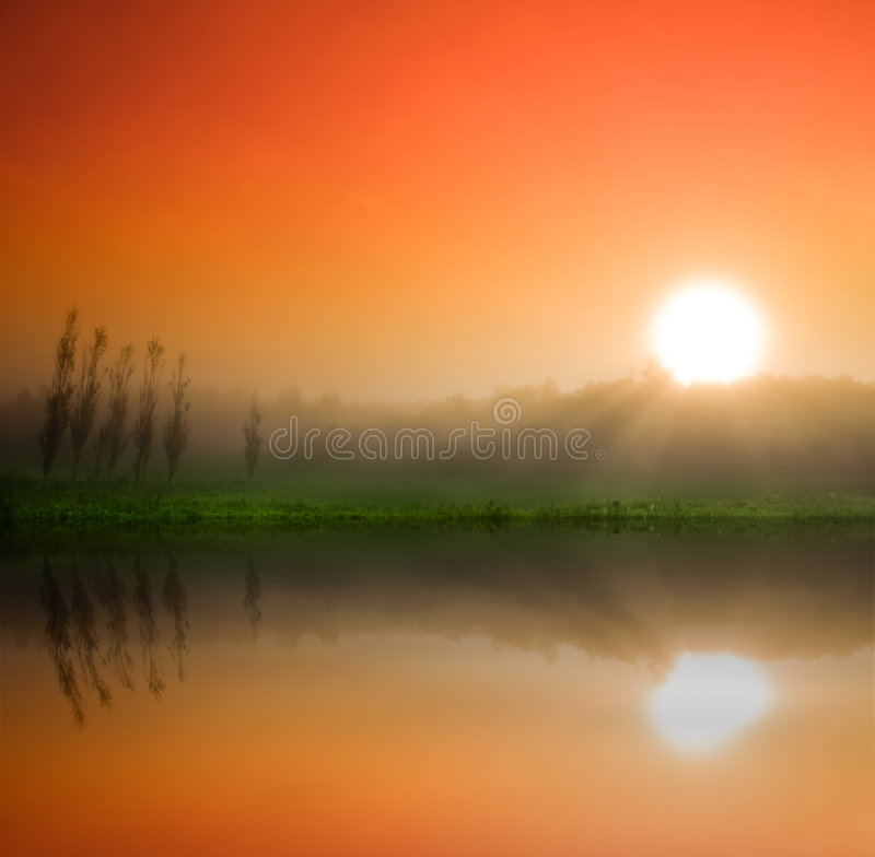 Mystical Morning royalty free stock photography