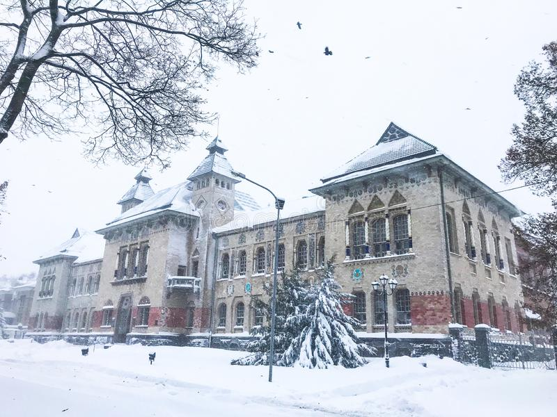 Mystical museum. Covered with snow and ice during windy weather and birds on the sky royalty free stock images