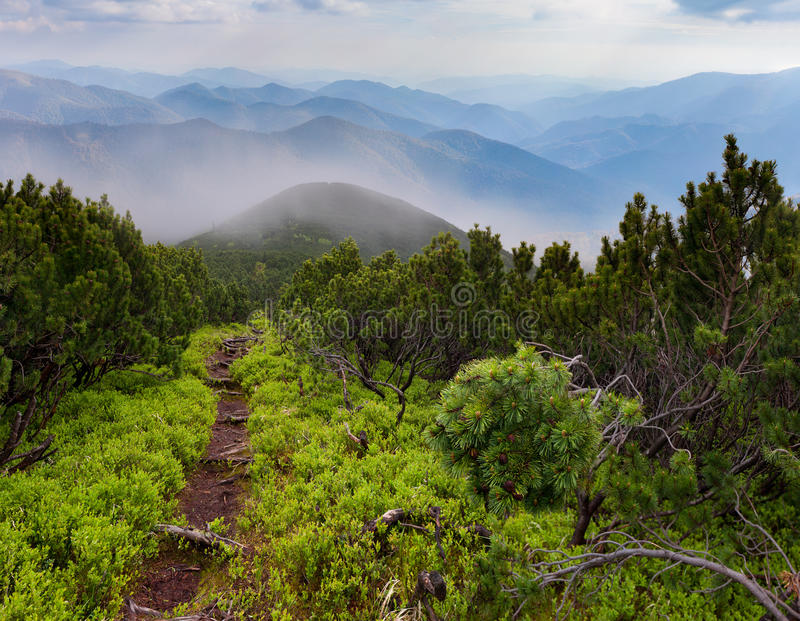 Mystical path in misty mountains royalty free stock image
