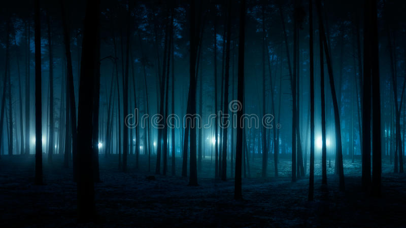 Mystical picture. Mystical landscape with a mysterious blue light royalty free stock image