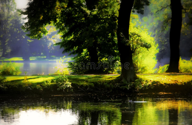 Mystical ponds stock photos