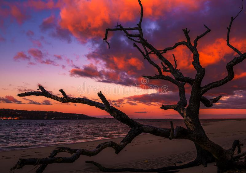 A little bit of heaven. Mystical sunrise on the beach. The sunrise colors the clouds in brilliant vivid colors at Sandy Hook Bay, New Jersey royalty free stock photos