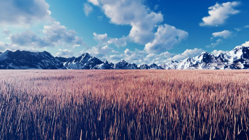 Mystical view, unusual grass, blue sky with clouds, morning sun and mountains in the distance. 3D Rendering royalty free illustration