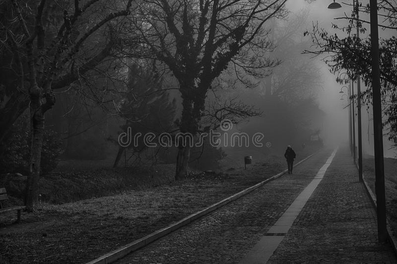 Mystical Walk path with fog silhouette of trees and man, misty w. Alkside, foggy place royalty free stock photos
