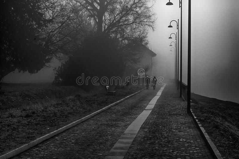 Mystical Walk path with fog silhouette of trees and man, misty w. Alkside, foggy place royalty free stock image