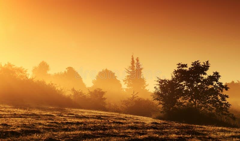 Mystiek landschap bij zonsopgang stock afbeelding