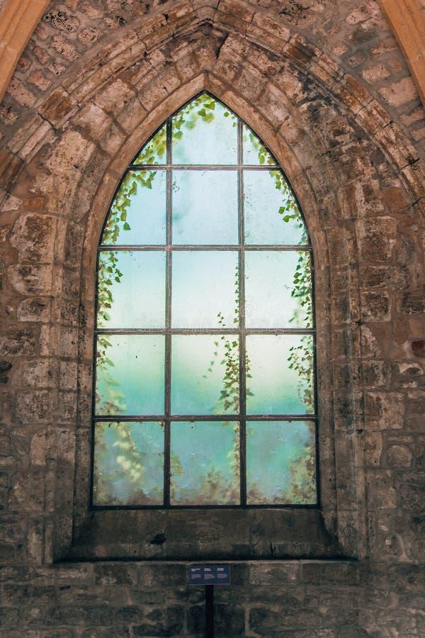 Mystiek middeleeuws kerkvenster met aan de andere kant het kweken van installaties in Orval-Abdij royalty-vrije stock afbeelding