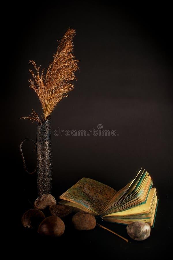 Mystieke duisternis met boek royalty-vrije stock afbeeldingen