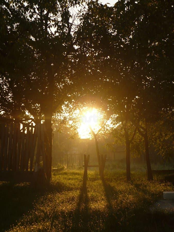 Mystische Morgenleuchte stockbild