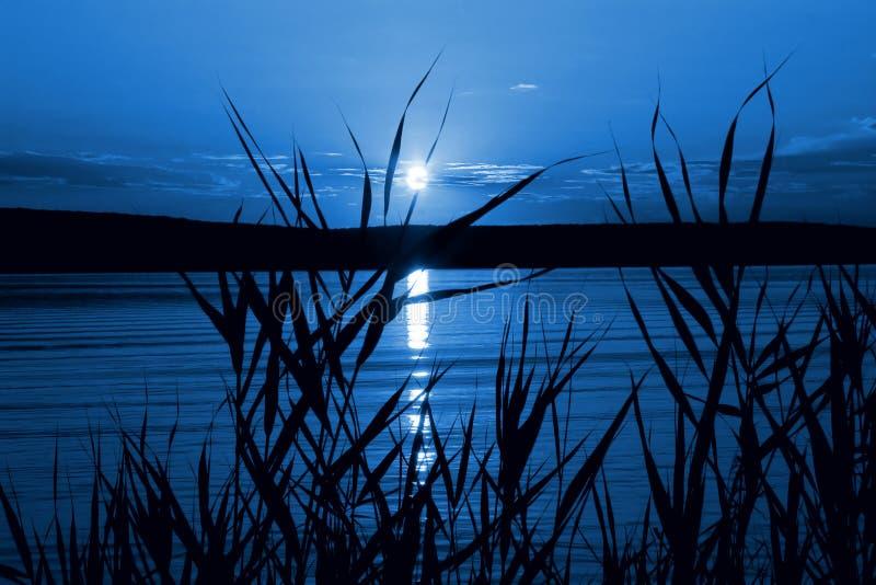 Mystische Nacht lizenzfreies stockfoto