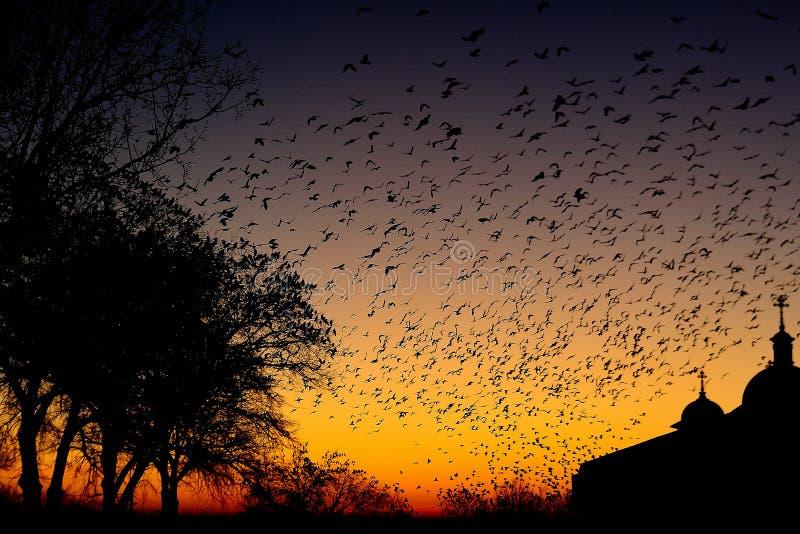 Mystischer Sonnenuntergang im Dorf lizenzfreies stockfoto