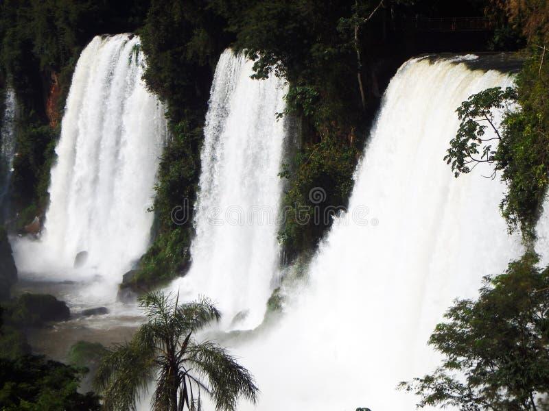 Mystischer Wasserfall stockfotografie