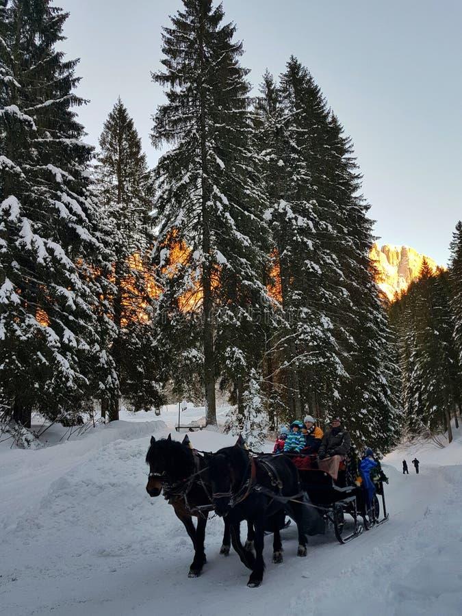 Mystisches Reiten durch den schneebedeckten Weg stockbilder