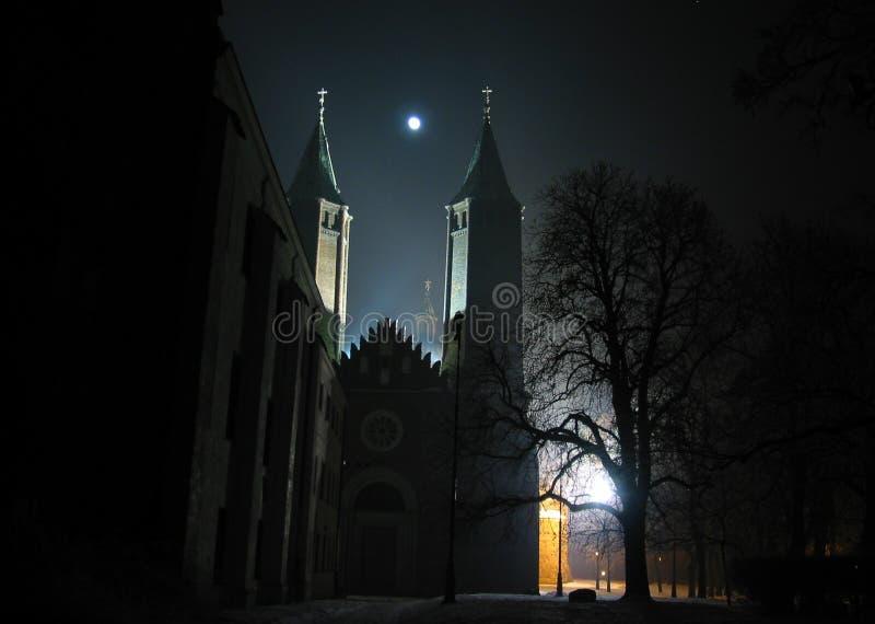 Mystisk gotisk domkyrka i Plock Polen på natten vid månskenet Domkyrka av den v?lsignade jungfruliga Maryen av Masovia, i Plock royaltyfria bilder