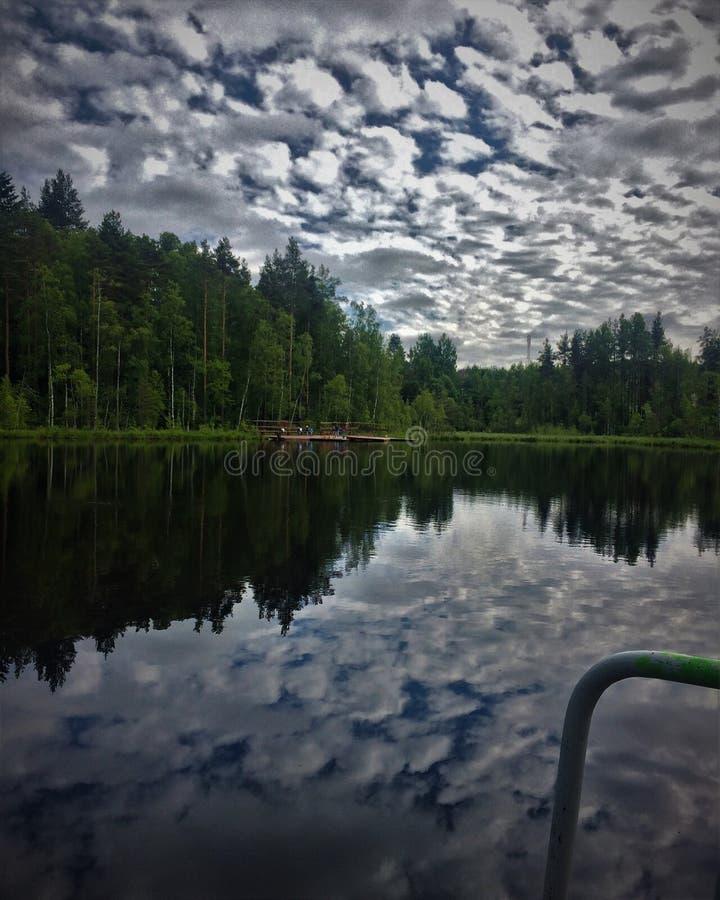 Mystisk skog med en bottenlös sjö royaltyfri bild