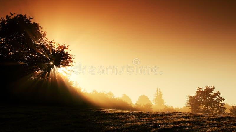 mystisk soluppgång för liggande arkivbilder