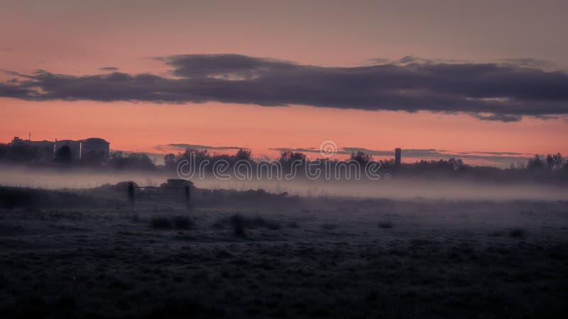 Mystiskt landskap av mist på fält på skymning i vår royaltyfri foto