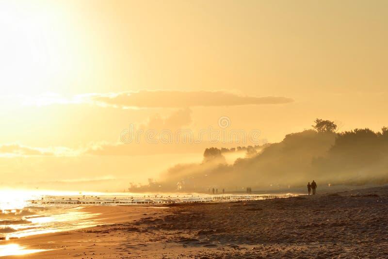 Mystiskt landskap på soluppgång arkivbilder