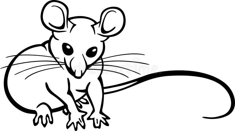 mysz ilustracja wektor