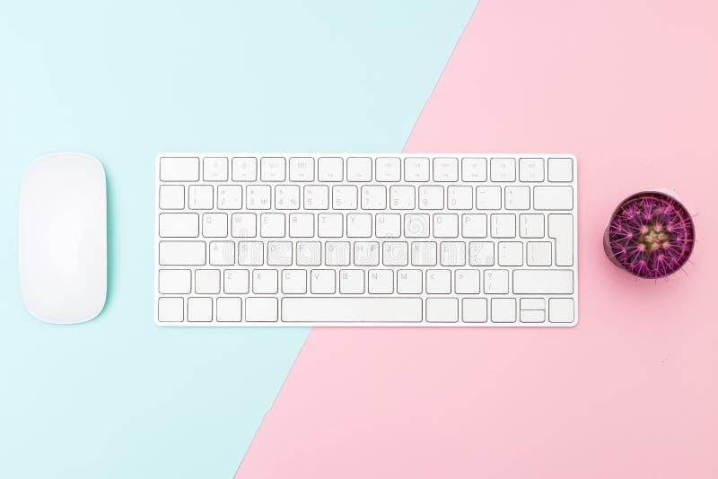 Mysz i klawiatura na pastelowym tle Minimalistyczny projekt obrazy stock
