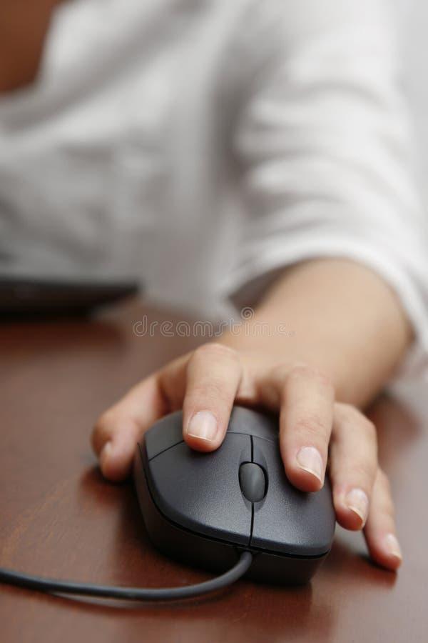 mysz ręce fotografia royalty free