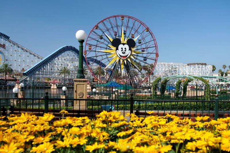 Myszki Miki Ferris Koło Disneyland obrazy stock