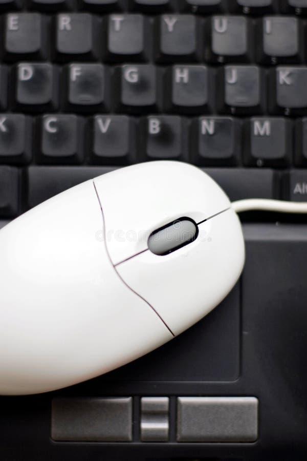 myszy notatnika komputer osobisty fotografia royalty free