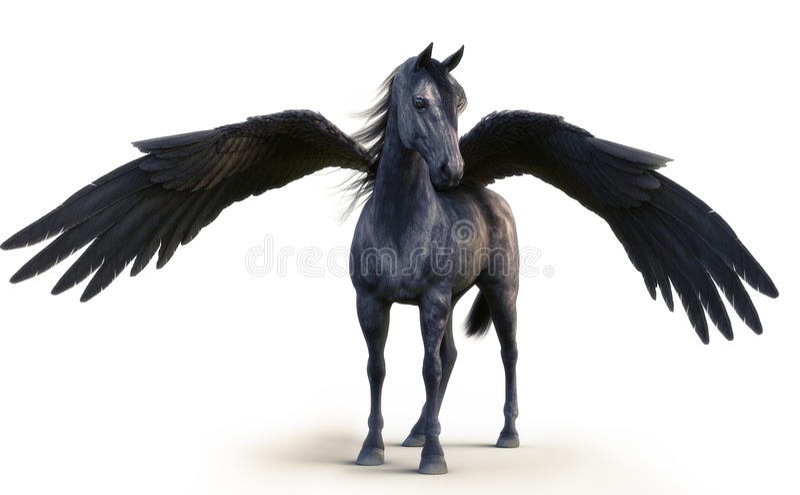 Mythischer schwarzer Pegasus, der auf Weiß aufwirft, lokalisierte Hintergrund vektor abbildung