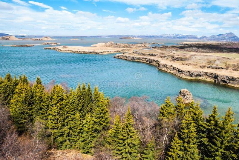 Myvatn湖,北冰岛横向  免版税图库摄影