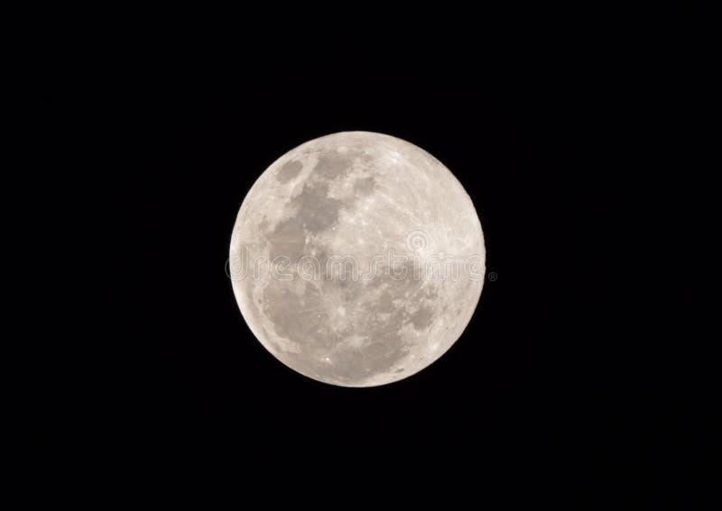 Nära övre fullmåne 'toppen snömåne 'som isoleras på mörk himmel i Thailand arkivfoto