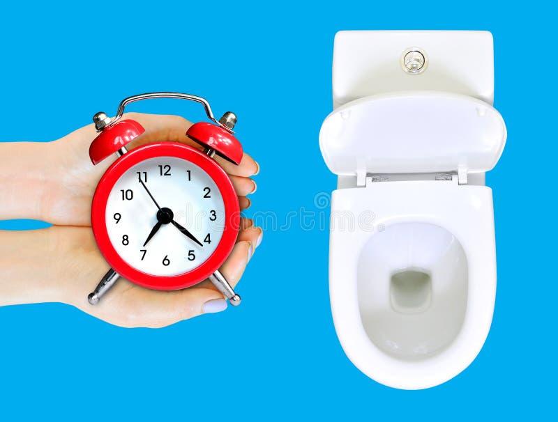 Não desperdice seu conselho do tempo As mãos fêmeas com despertador estão no toalete Desperdi?ando o conceito do tempo Isolado no imagens de stock