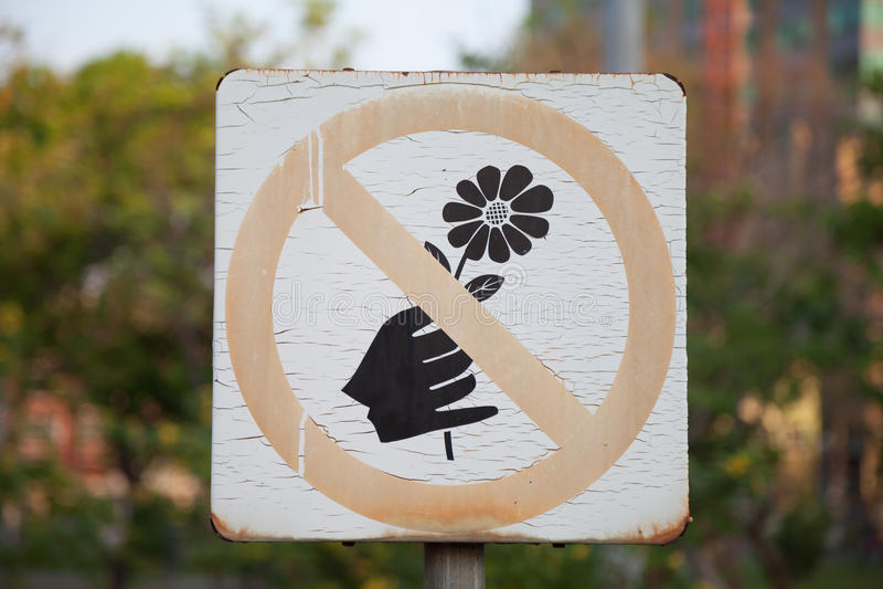 Não escolha flores fotografia de stock royalty free
